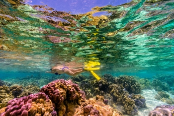 tahaa_resort_spa_french_polynesia_activities_snorkling_coral_reef